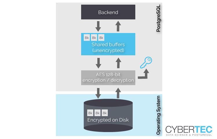 transparentnego szyfrowania danych