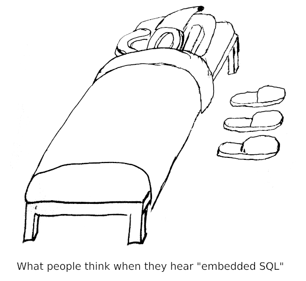embedded SQL taken literally